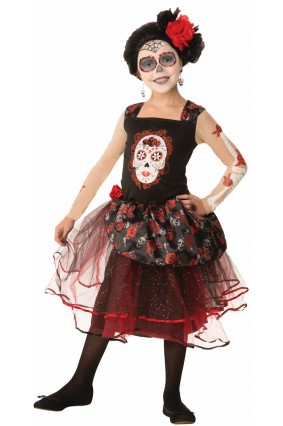 Rosa Senorita Costume