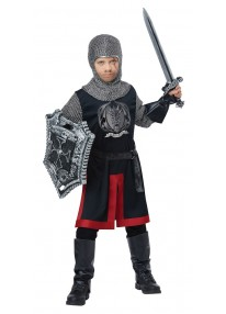 Dragon Knight Child Costume