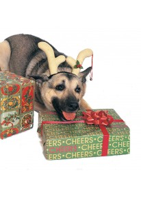 Dog Reindeer Antlers
