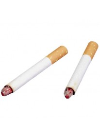 Fake Cigarettes 2 Pieces