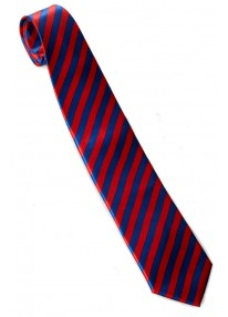 Striped Necktie Red And Blue