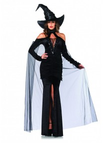 Sultry Sorceress Costume