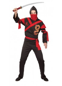 Dragon Ninja Warrior Costume