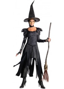 Deluxe Wicked Witch of the West Costume