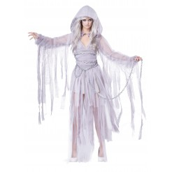 Haunting Beauty Costume