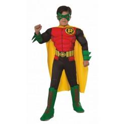 Deluxe Robin Costume