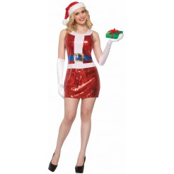 Sequin Santa Dress Costume
